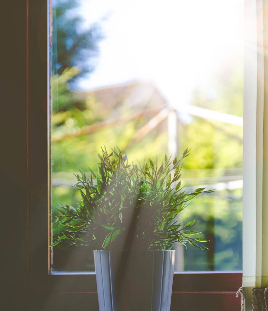 solar-window-films-in-bedfordshire